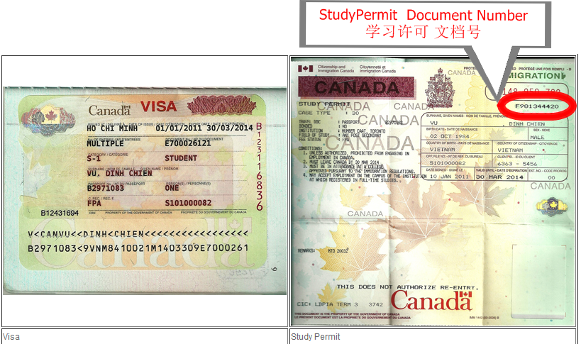 学习许可工作许可 : 文档号 Study Permit/Work Permit: document number