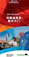 中文版简介