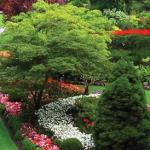 中国游客爆长 每年给加拿大送来15亿大礼