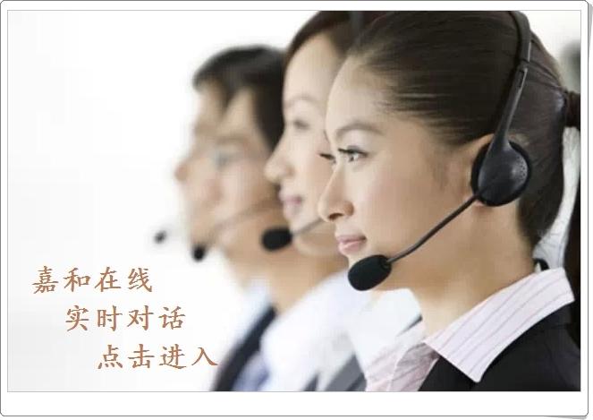 嘉和国际咨询公司 在线客服 实时对话 或留言