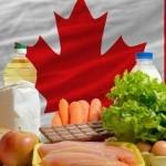 中国与加拿大自贸区谈判前景无限