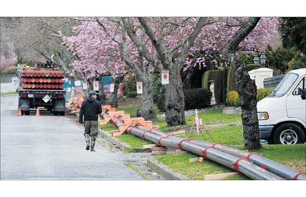 每天从刘凤林家涌出的地下水多达200万公升