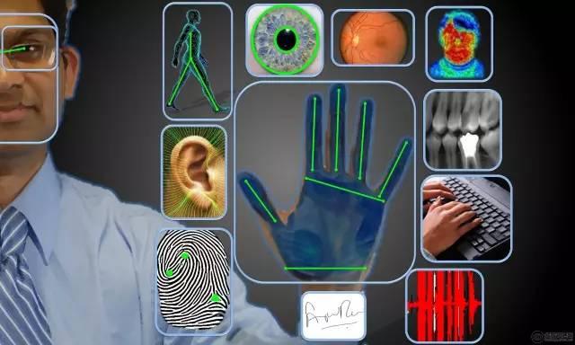 生物信息收集包含哪些内容