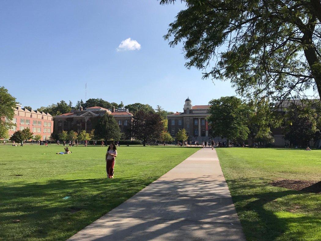 雪城大学的绿地。 YUEQI YANG